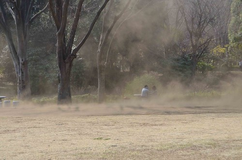 Flying Dust in the Tokyo Imperial Gardens