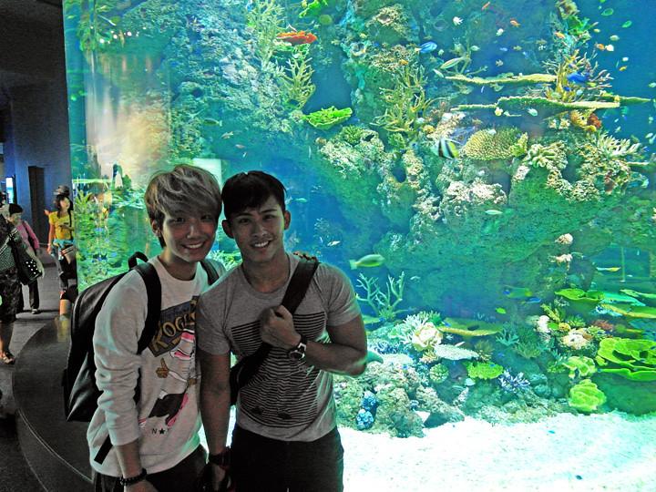 typicalben eddee S.E.A. Aquarium world's largest aquarium