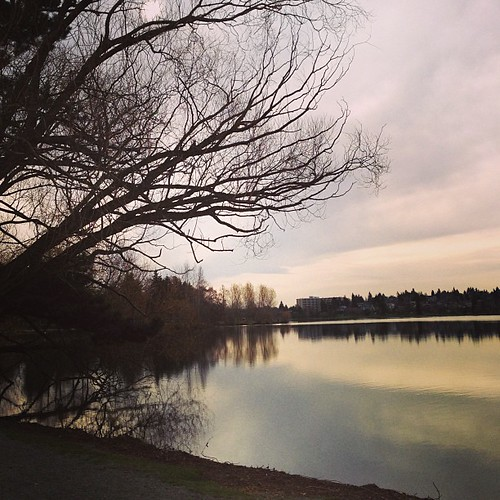 Tuesday = Greenlake Run! I was supposed to do 5 miles today but only got in 4 due to time constraints. Maybe I'll go for a walk later.