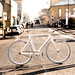 Urban Cyclist 7
