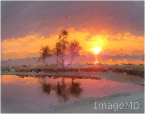 sunrise florida miami hammock hdr matheson coralgables glazeapp