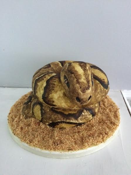 Python Cake by Michelle Singleton