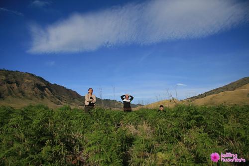 8347570777 a62e77d153 Trip and Tour to Bromo with Keliling Nusantara