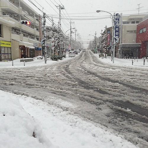 我慢できずに外に出た。粉雪じゃないから、いきなりシャーベット状なので始末が悪い。それにしても、駅前の坂道に放置してある車は…