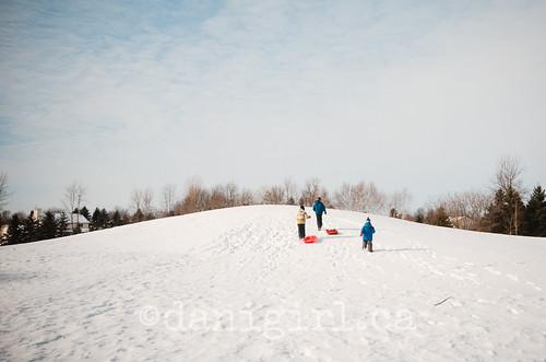 雪橇拉雪橇的乐趣