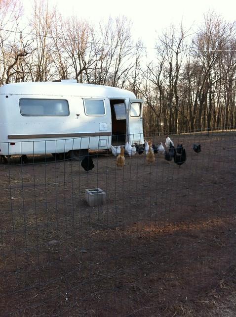 Camper-coop