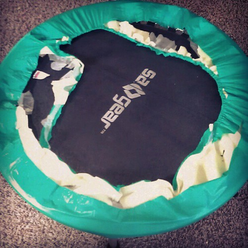 I think it's safe to say that the mini trampoline cover has gotten a little thrashed. Time for a new one!