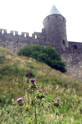 Walled Citadel