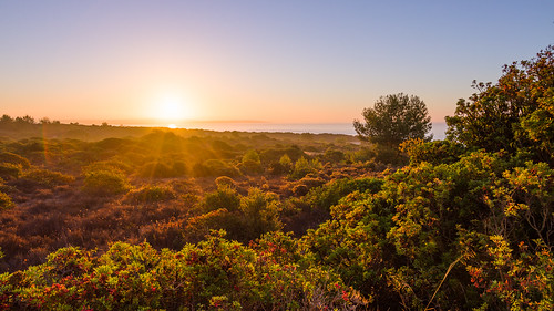 light portugal sunrise canon landscape coast algarve fluss sonnenaufgang 1022mm hdr 50d efs1022mmf3545usm canonefs10223545usm exposurefusion