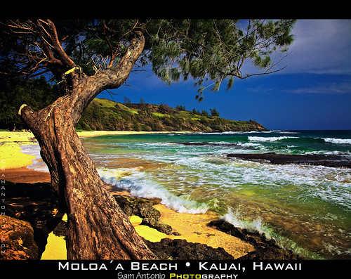 Kauai is magic: you can transform it into Asia, Africa or South America - and never leave the USA by Sam Antonio Photography