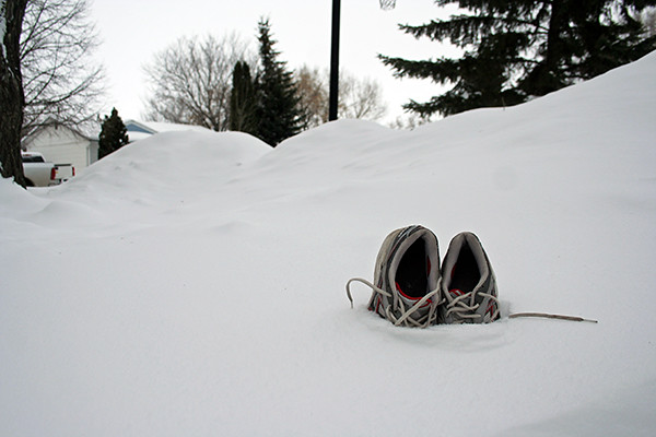 41/365 :: snow runners