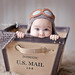 Domestic Mail by babybeanportraits