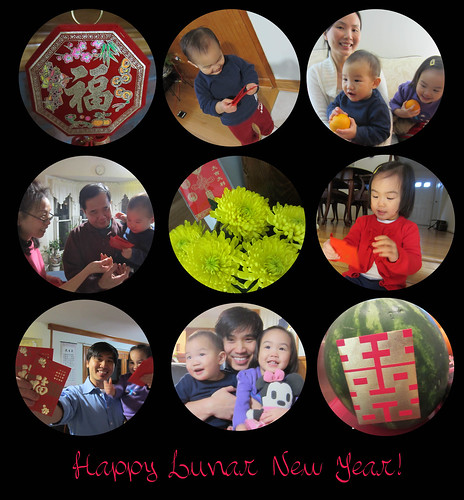 lunar new year 2013