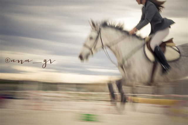 more equestrian