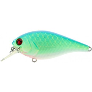 biggie BC Shad Fishing Lure