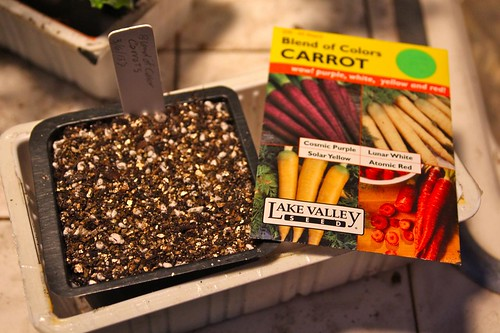 Carrot (Blend of Color Mix) Sown