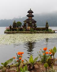 Water Palace Tirtagangga, par Franck Vervial