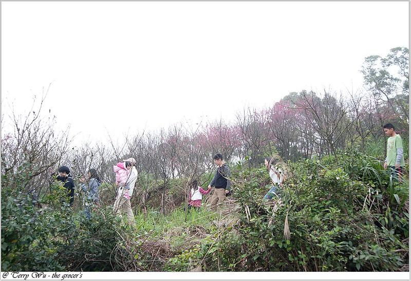 2013-02-14 三芝走春-12