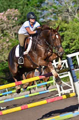 physical exercise(0.0), animal sports(1.0), equestrianism(1.0), english riding(1.0), modern pentathlon(1.0), eventing(1.0), show jumping(1.0), hunt seat(1.0), equestrian sport(1.0), sports(1.0), recreation(1.0), outdoor recreation(1.0), equitation(1.0), horse(1.0), jockey(1.0), person(1.0),