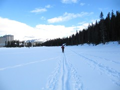 Cross-country skiing on the frozen Lake Louise