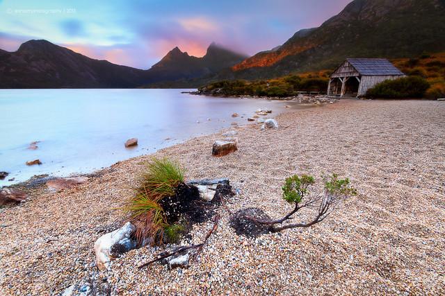 Welcome To Wild Tasmania