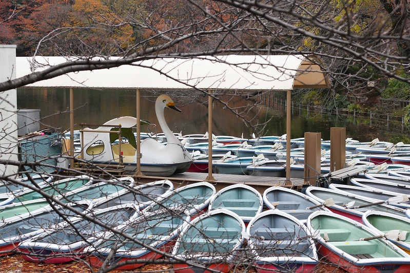 King of the boats, Tokyo, Japan