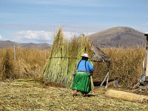 Lac Titicaca: les pompons en alpagas en bout des tresses