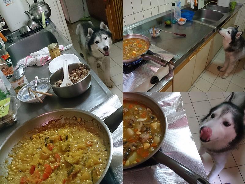 Doggy貪吃狗2瓦斯3