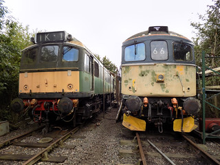 D7523 and 33019