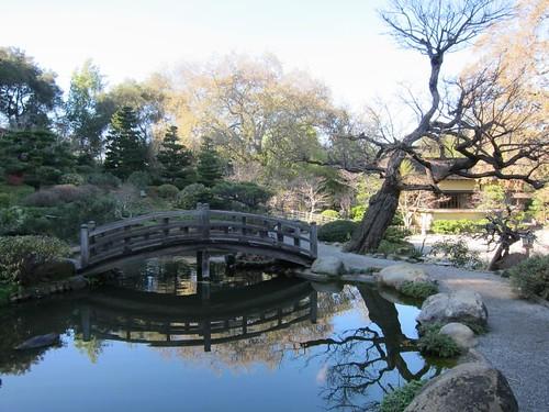 Hakone Japanese Gardens, Saratoga, CA, pond… IMG_2458