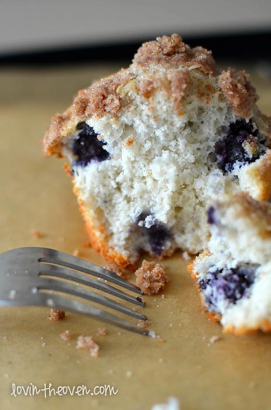 blueberrymuffins-12
