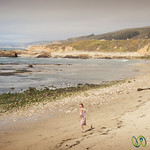 Beach Time on the California Coast