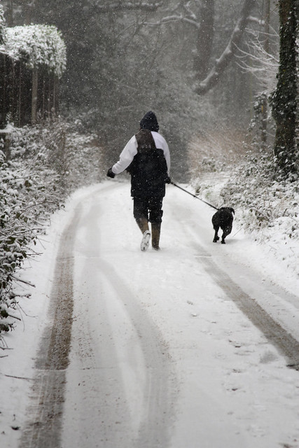 walking in the snow - photo #5