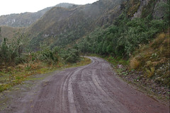 On the road from Central Valley to Papallacta pass, Ecuador.