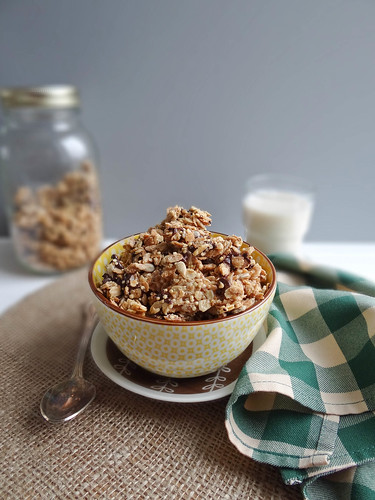 pb banana chocolate chip granola