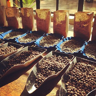Cupping at CKCM