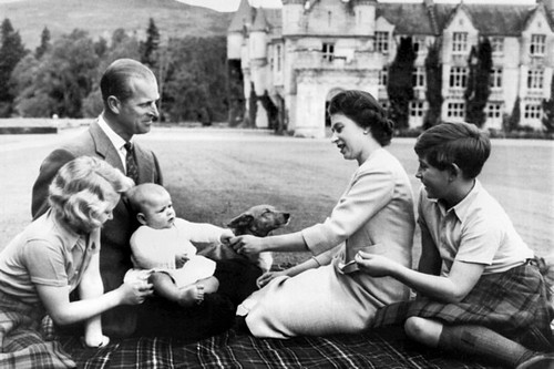 1950 The royal family in 1960.