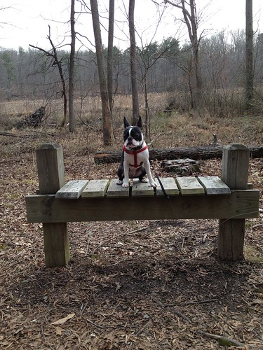 Charlie's First Trip to Poco Feb 2013 (85)