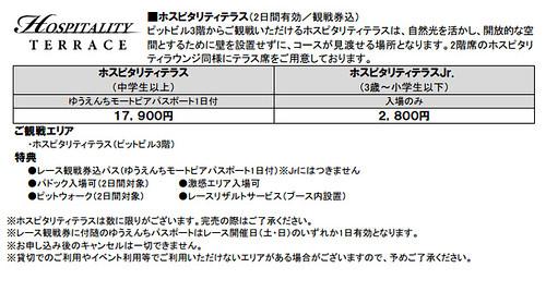 2013鈴鹿2&4チケット(6)