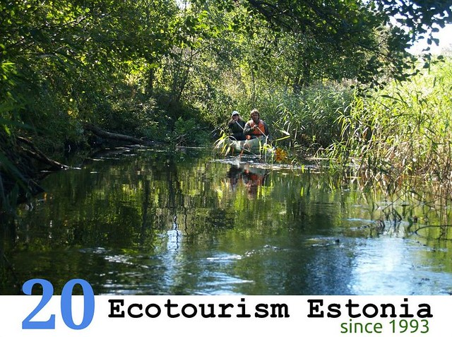 ecotourism interpretation Ecotourism is a major trend with a growing demand for consumers for packages which offer responsible travel to natural areas, conservation of the envir.
