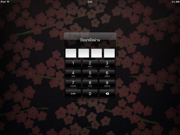 iPad Password