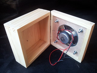 Inside view of speaker attached to box