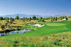 Primm Valley Golf Club- Desert Course