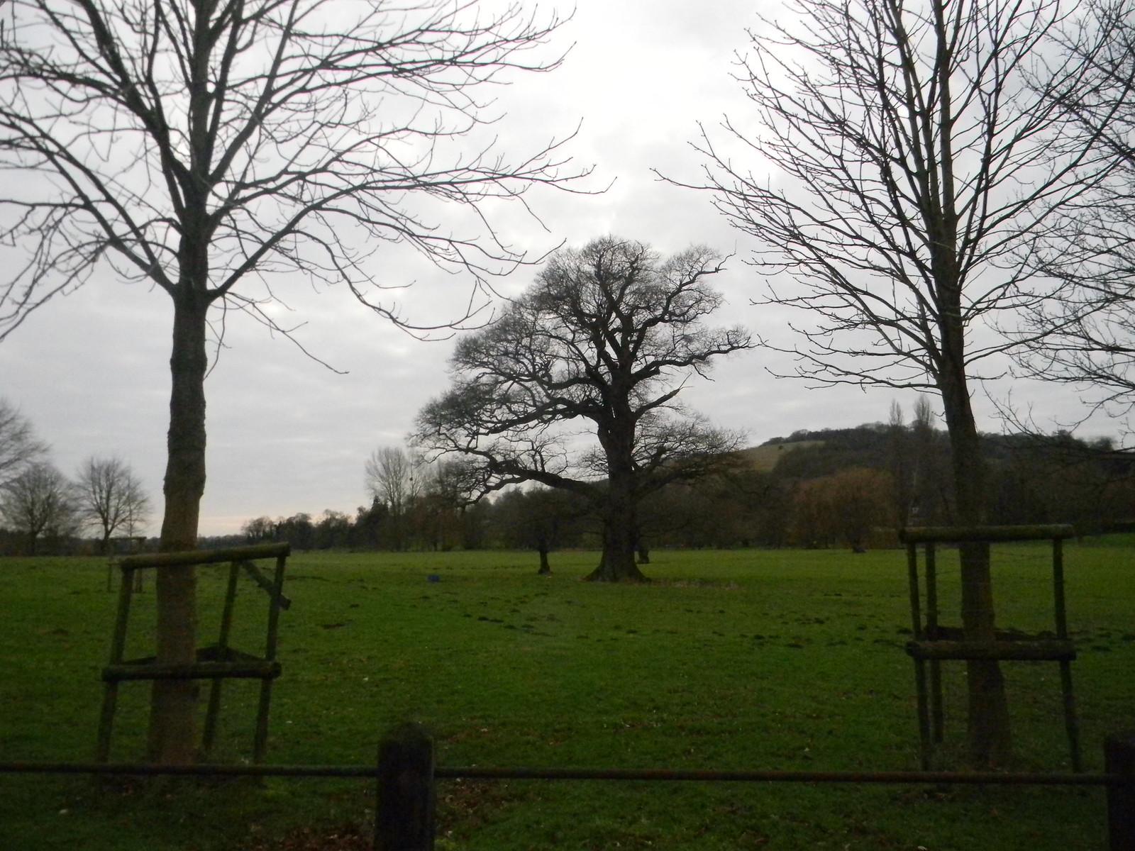 Parkland Godmersham, Chilham Circular