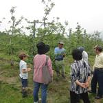 りんごやSUDA果樹園風景4