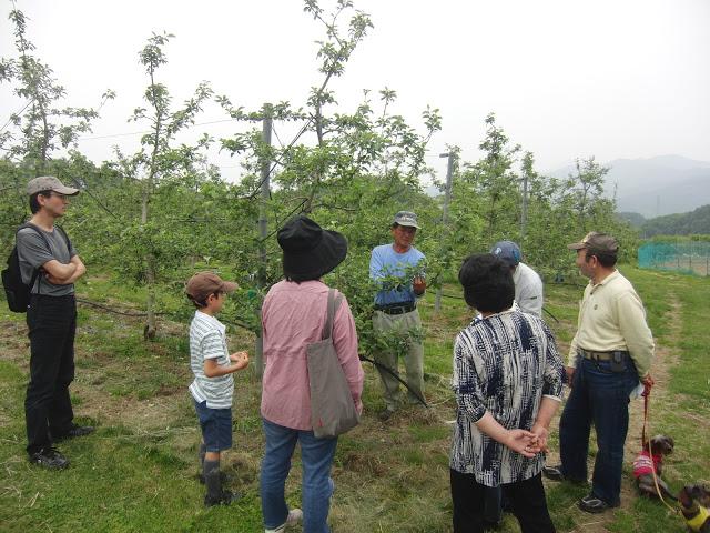 りんごやSUDA果樹園風景4_拡大