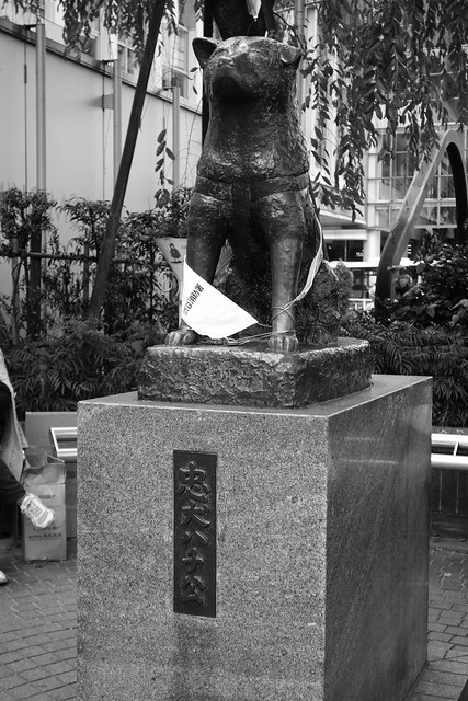 Statue of Hachiko The Dog   Flickr - Photo Sharing!