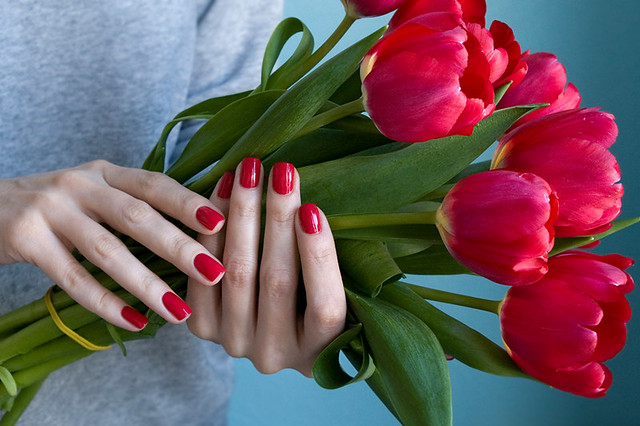 Opi Dutch tulips