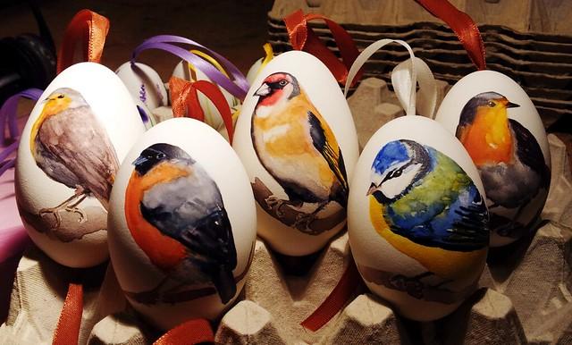 Birds on eggs