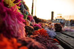 Yarn Bombing at the Harbour!